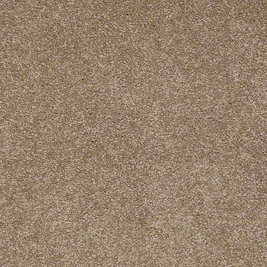 Shaw Carpet Ultimate Expression 12 19698 Tile Laminate